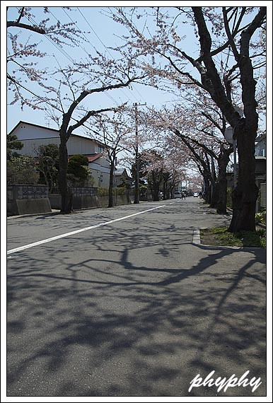 kasiwagi11