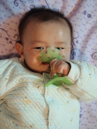 綠色小花4