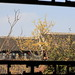 2012-01-31-13-38-38