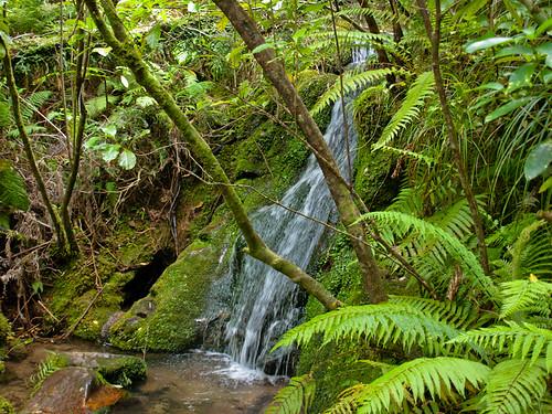 Parque Nacional de Abel Tasman 34