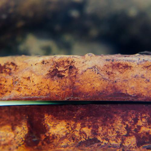 Corrosion of conformity #1173