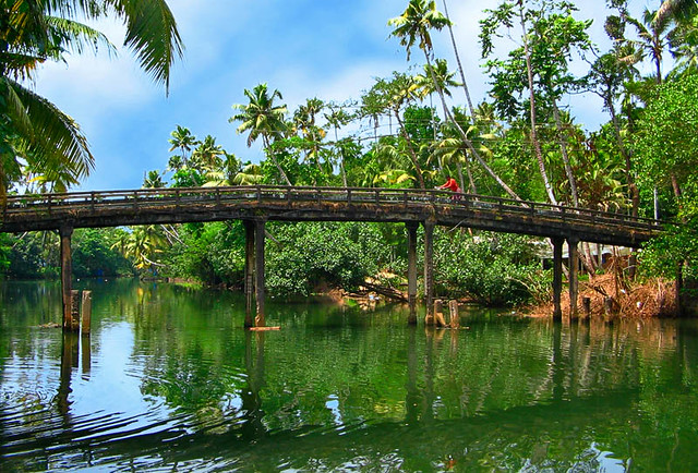 Nature Beauty Of Kerala The Image Kid Has It