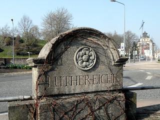 Luthereiche in Wittenberg