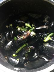 moule salsa à la coriandre