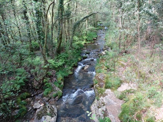 Río Lérez en A Pobra do Caramiñal