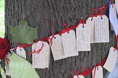 Wishing tree, Avonside