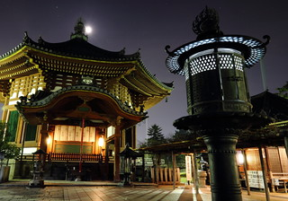 奈良 興福寺 五番 完  /  Night View of Koufukuji Temple in Nara City #5 Fin