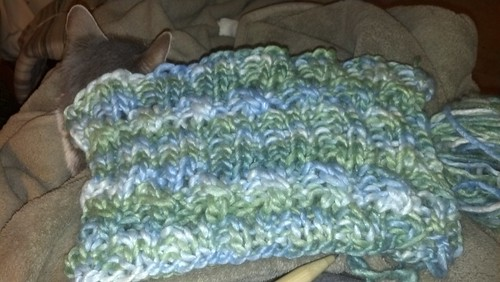 Persistent cowl