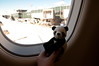 panda says goodbye