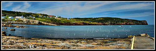 Flatrock, Newfoundland by Nancy Hawkins