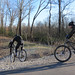 Wolf River Trail (Mountain Bikes 2)