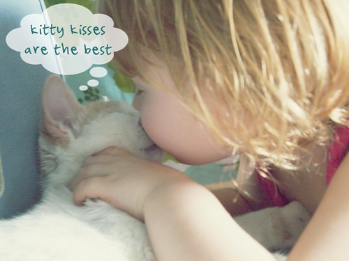 kitty kisses are the best