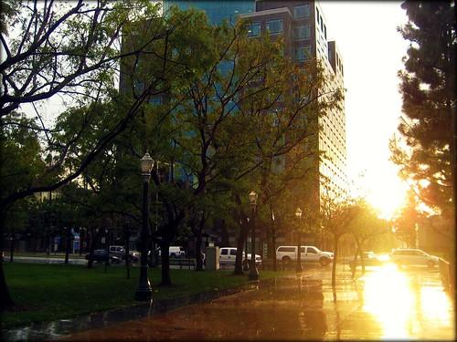 Rain or Shine {46/366}