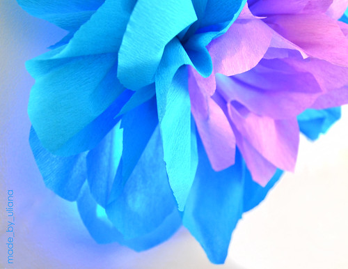 crepe paper flowers by made_by_uliana