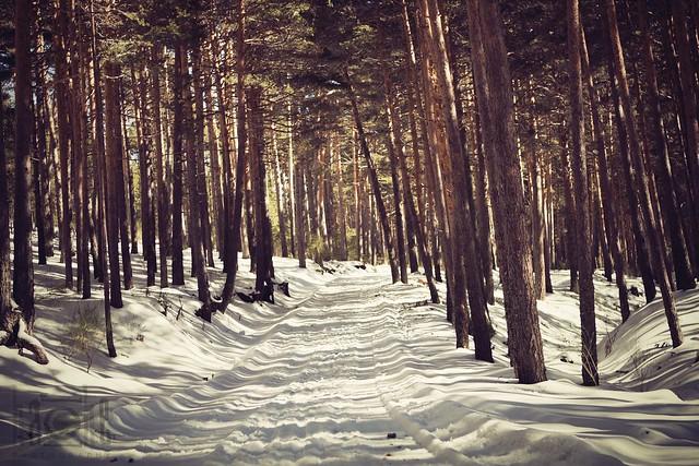 Luz de invierno 2
