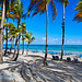 Palm Trees Shaded Beach with Lounge Chairs, Isla Verde, San Juan, Puerto Rico
