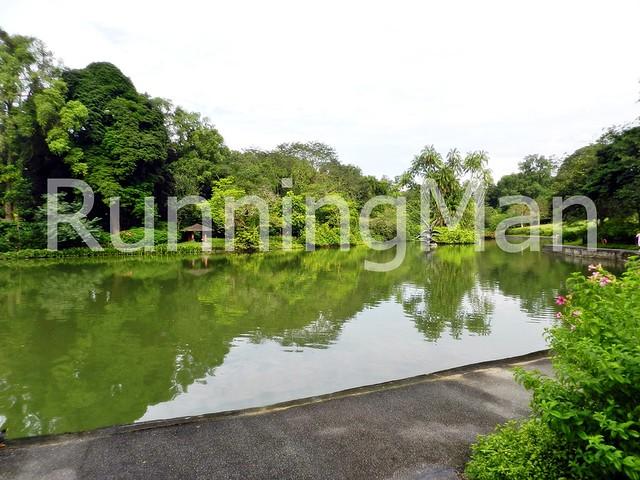 Singapore Botanic Gardens 01