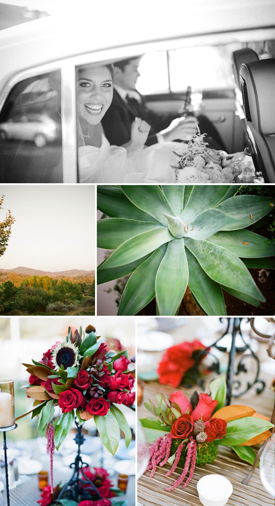 Shady Canyon Wedding-comp-14