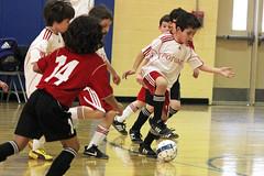 futebol de salã£o(1.0), sports(1.0), team sport(1.0), player(1.0), football(1.0), ball game(1.0),