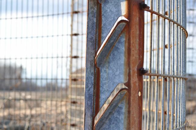 farmgirl-0100.jpg