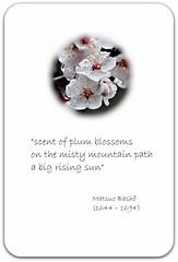"""scent of plum blossoms..."""