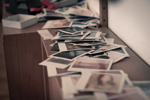 Swimming in a Sea of Polaroid
