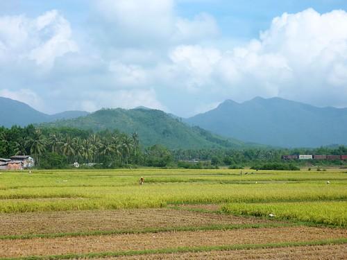 V-Route Quy Nhon-Da Nang (11)