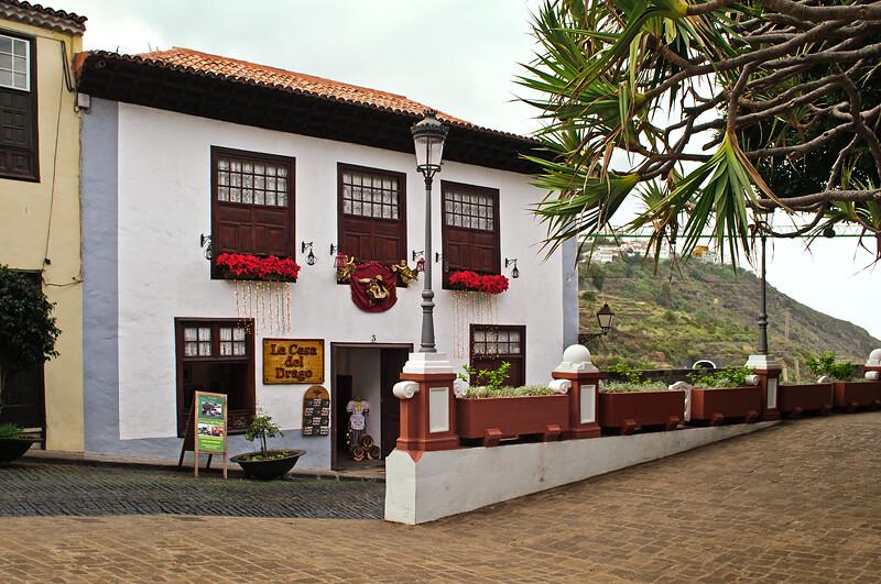 Tenerife. Icod de Los Vinos. La Casa del Drago.