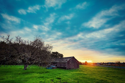 sunset nature beauty barn rural decay warmth penngrove