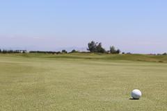 Hartland Classic Golf Tournament 2014 06