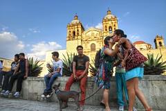 While Walking In Oaxaca II