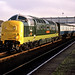 A sparkling 55002 by delticfan