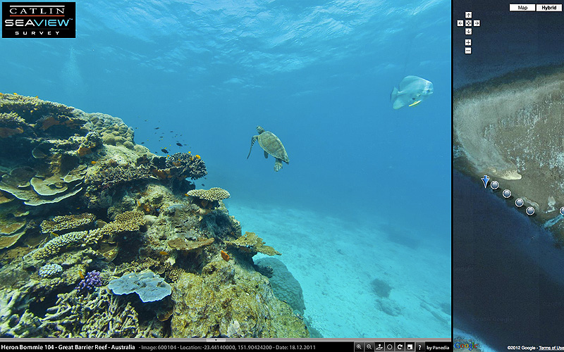 SeaView - Google Street View goes in search of Nemo
