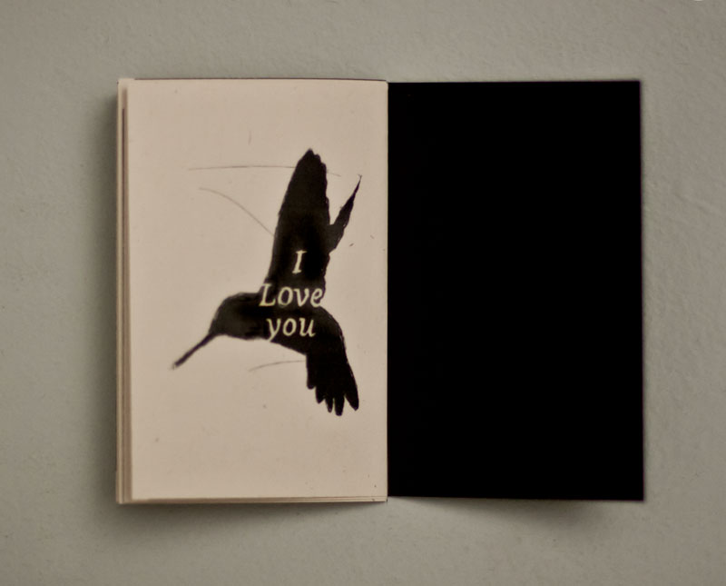 hummingbirdbook-4