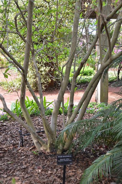 Georgia Southern University Botanical Garden Wildlife Center Flickr Photo Sharing