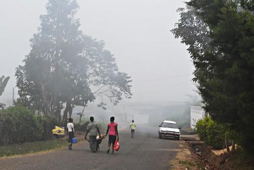 Misty Bokwango Road