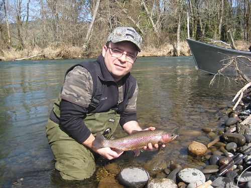 Mckenzie river trout fishing report ethan nickel outfitters for Mckenzie river fishing