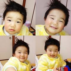 ちょこっと散髪したとらちゃん(2012/3/17)