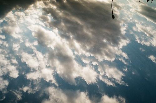 2011-1206-natura-fuji-natura1600-005