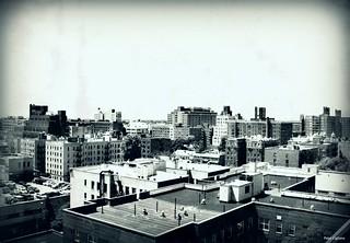 Jamaica Queens New York Rooftops