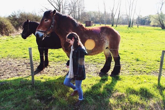 april horses