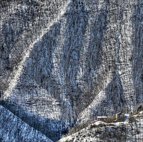 trees winter italy mountain snow mountains tree alberi forest nikon italia neve albero montagna montone appennino romagna apennines marcofrancini arunte marcofranciniphotography