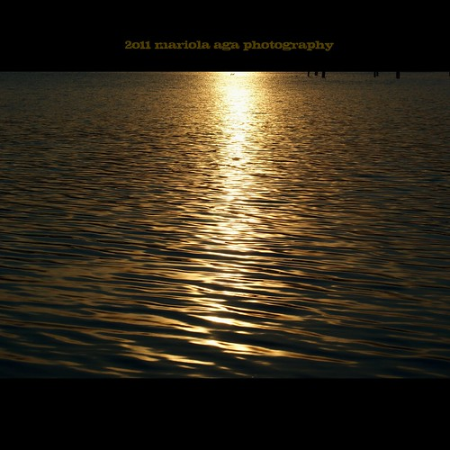 park sunset summer sun nature water backlight square golden evening pond surface schaumburg ripples tones thegalaxy bussewoodsforestpreserve thesunshinegroup sunrays5