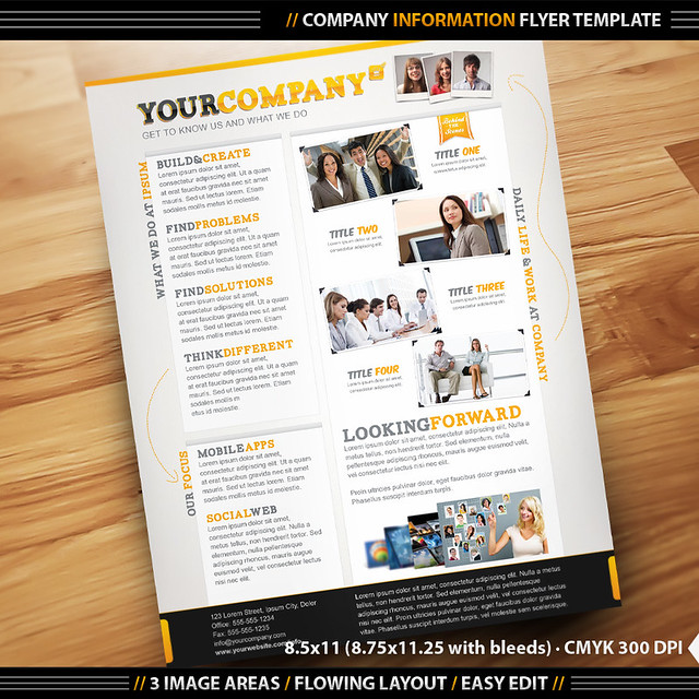 company info flyer template company information identity flickr photo sharing. Black Bedroom Furniture Sets. Home Design Ideas