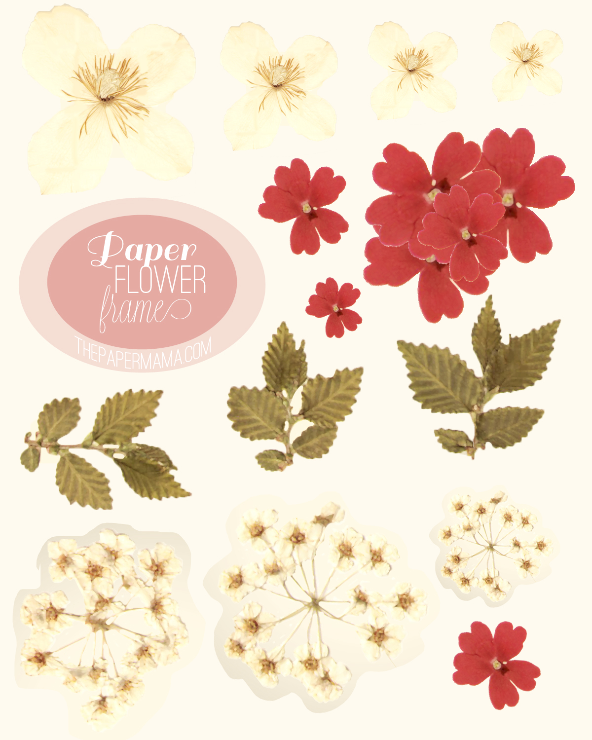 you can download the flower printouts here here