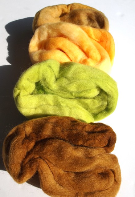 SCF-Fiber Club-February 2012-Citrus Splash-organic merino wool top-110gr