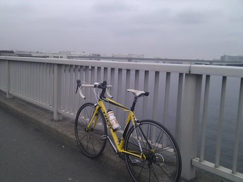 渡る橋を間違えた。