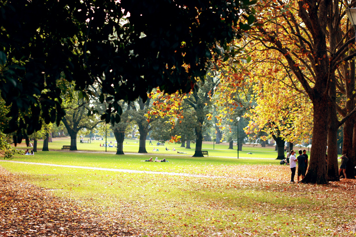 autumn park melbourne 2