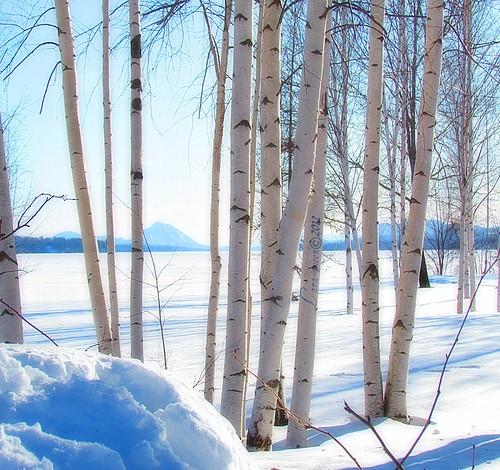 Paysage hivernal au mois de mars