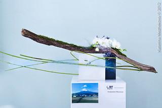 Impressions of Fuji Project
